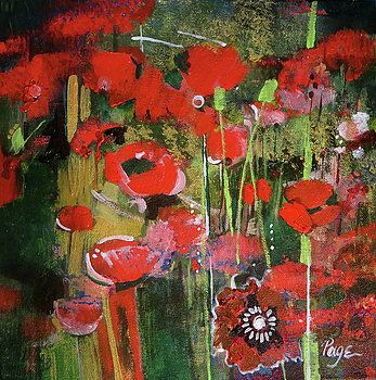 Fresh Poppies by Page Samis
