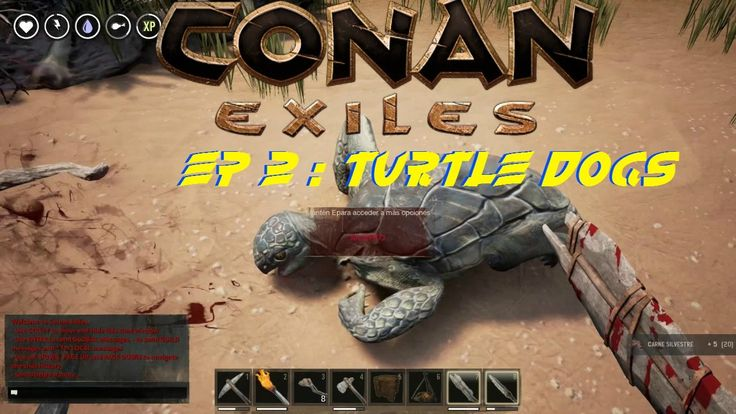 how to play conan exiles a ssingle player