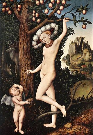 Lucas Cranach the Elder (German, 1472-1553)  - Venus and Cupid (1526-27)