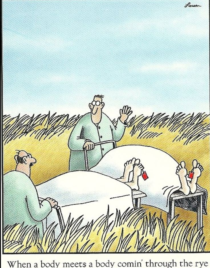 The Far Side; I laughed at this harder than I should have