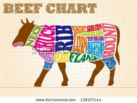 Beef Chart Ilustração Vetor Stock 138107144 : Shutterstock
