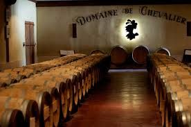Domaine de Chevalier - Hubby has a row of vines here.