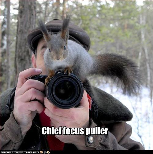 Chief focus puller