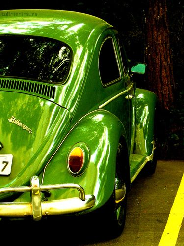 VW Bug.