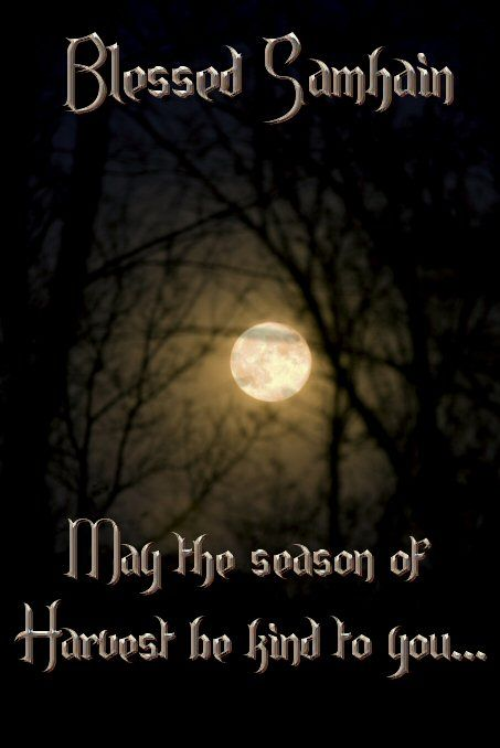 Wishing you and yours a blessed Samhain, May the turning of the wheel bring you peace, love, happiness, and all things new! Blessings to you and your beloved dead, on this most holy night, when the veil is thin, and there is magick in the air.