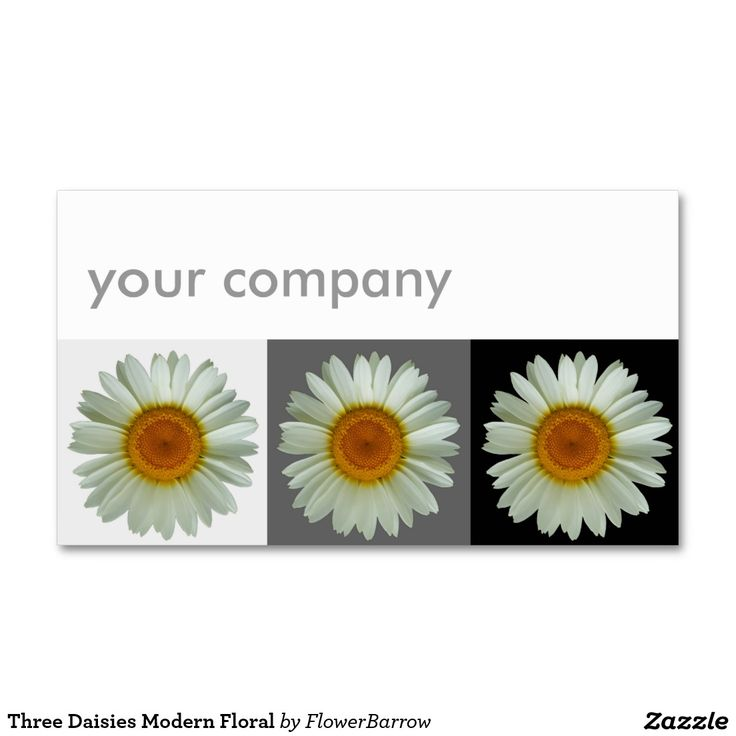 Three Daisies Modern Floral Double-Sided Standard Business Cards (Pack Of 100)