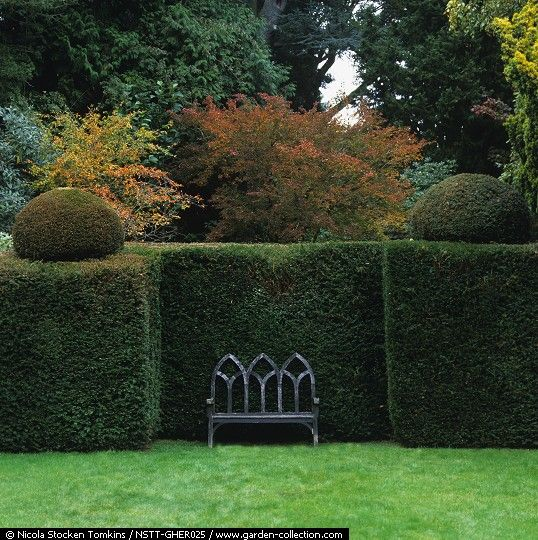 Here a yew hedge forms an interesting black-green alcove in which to place a garden seat.