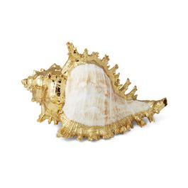 Ram's Murex Shell by aerin lauder