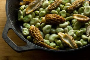 Fava Beans with Morel Mushrooms
