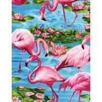 Flamingos Turquoise