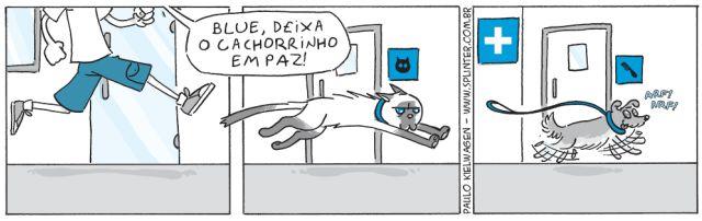 Confira a nova história: Pet Shop Blue #004  Definitivamente preciso de uma caixa de transporte http://ift.tt/2lWnLZa