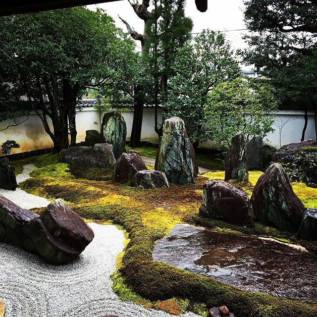 Private Small Garden Design: 1000+ Images About Rock Garden Ideas On Pinterest