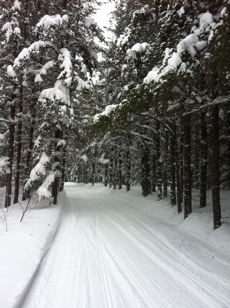 Northern Ontario Canada snowmobile trails  Cochrane scenery