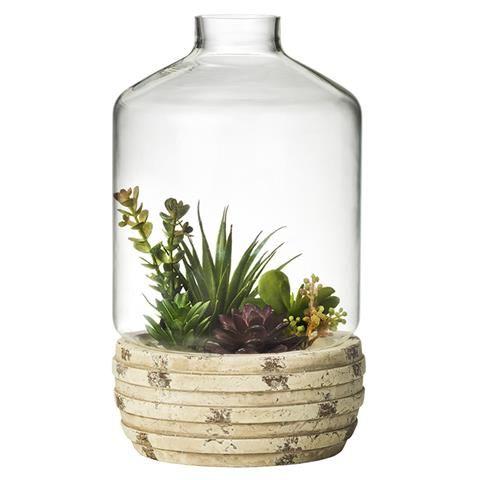 terrarium gardeners Choice