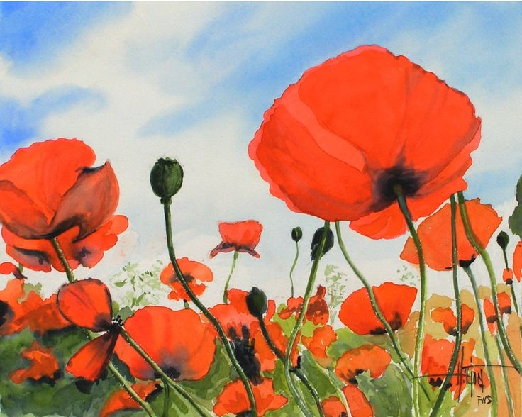 Buy poppy flowers online watercolor poppies poppies painting art prints for sale f mightylinksfo
