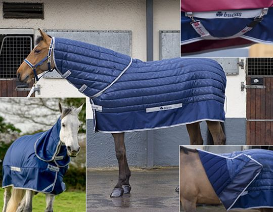 Our Website For The Finest Equestrian Arel Horse And Rider Riding Helmets Show Coats Dressage Breeches Blankets Thousands More