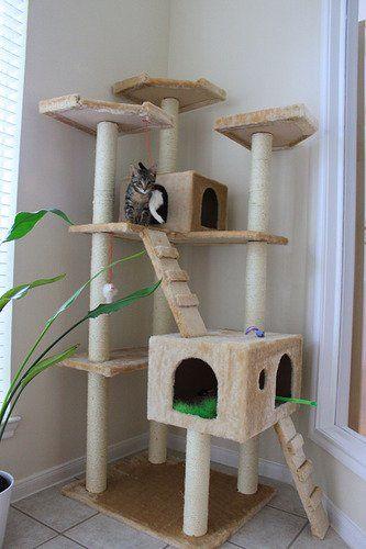 Amazon.com : BestPet Cat Tree Pet House Condo Activity, 73-Inch, Beige : Pet Supplies