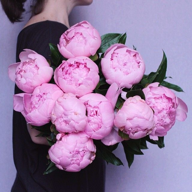 Is there anything prettier than a bouquet of pink peonies??