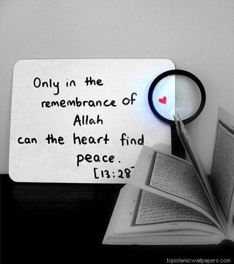 """... By the remembrance of Allah Hearts are assured."" {Al Ra'd 28}"