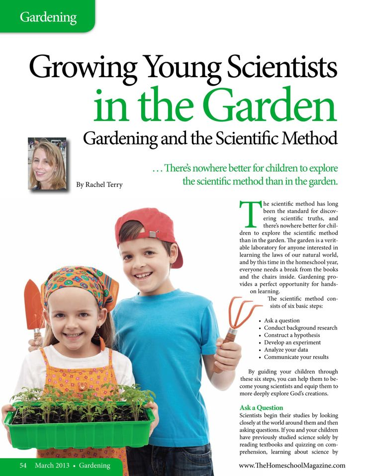 The Old Schoolhouse is the premier, quarterly homeschooling magazine, worldwide! Packed full of encouraging and informative content, TOS brings you the biggest names in homeschooling all in one place. Columnists such as Diana Waring, Karen Andreola, Jessica Hulcy, Dr. Brian Ray, Dr. Mary Hood, Deborah Wuehler, Kate Kessler, Andrew Pudewa, Leigh Bortins, Rea Berg, Mark Hamby, Zan Tyler and several others come to bless and help uplift your homeschooling experience each month.