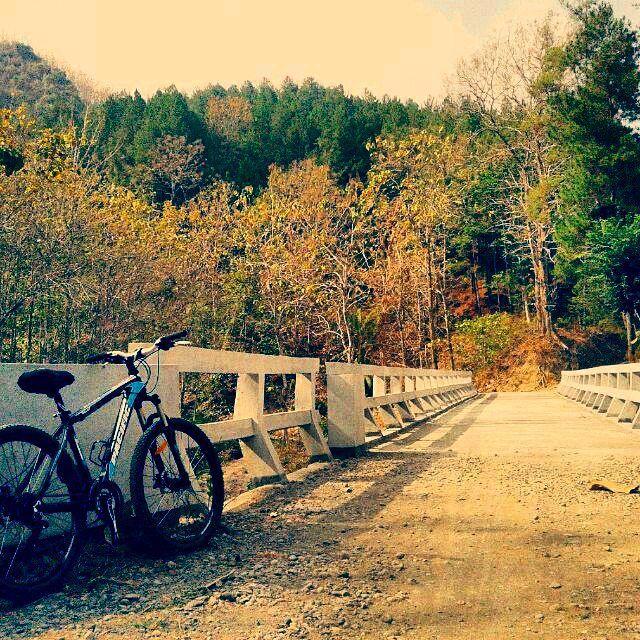 kata om @tamatamsar ini jembatan cinta. sore-sore gini sepedaan kesini sama pasangan romantis ngets. sayang admin gapunya pasangan :') #pacificbikes #mountainbike #mtbindonesia #sepedagunung #hardtail #crosscountry #sepeda #pacificbikerider #romantis #sore #bersepeda #jembatan #bridge
