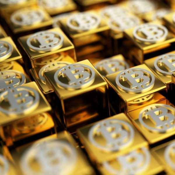 Bitcoin Gold Addresses 'Scam' Wallet and Premine Endowment Process #Bitcoin #addresses #bitcoin