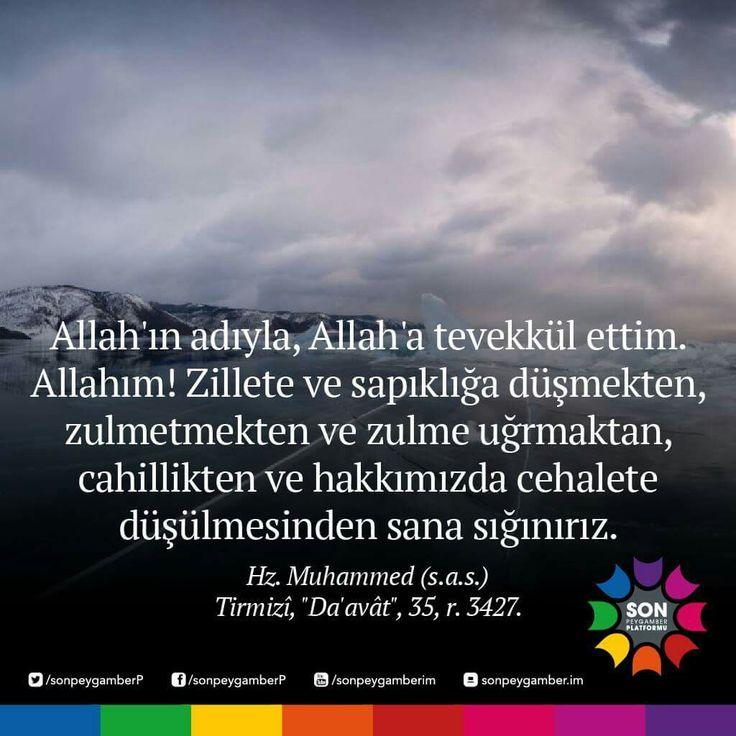 #sahih #tirmizi