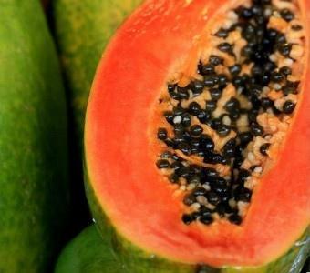 1000 Images About Frutas Tropicales Y Ex 243 Ticas Tropical
