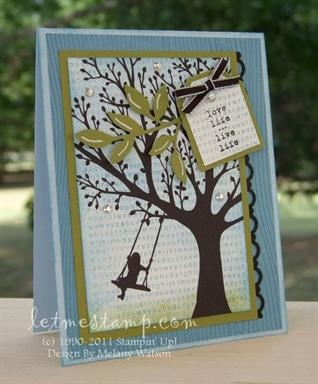 Gorgeous card using Stampin' Up! products