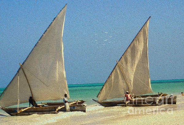 Zanzibar Dhow Fishing Boats beached on a long stretch of white  powder of African sand.