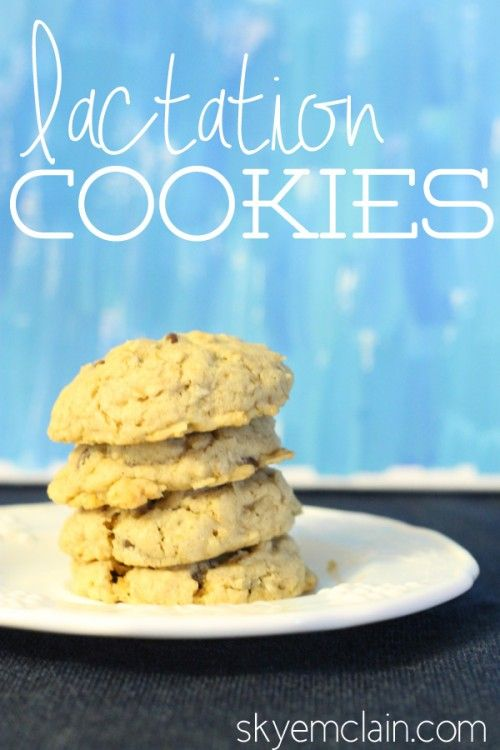 Yummy lactation cookies - good for breastfeeding moms!