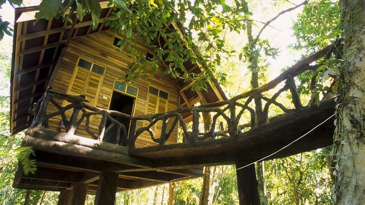 riverview lodge thailand - Google Search
