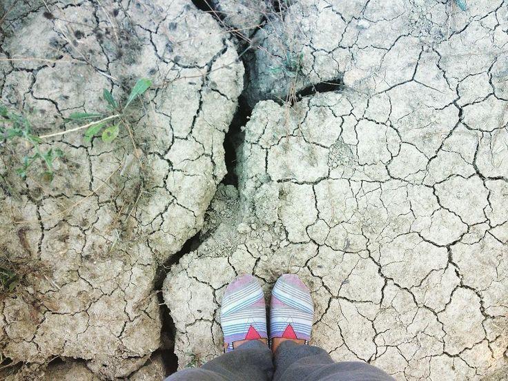#livorno #summer #caldo #hot #estate #piedi #feet #country #campagna #caldoboia #nature #l4l #like4like #likeforfollow #instagram #instagood #instalike #toscana #tuscany #tuscanygram