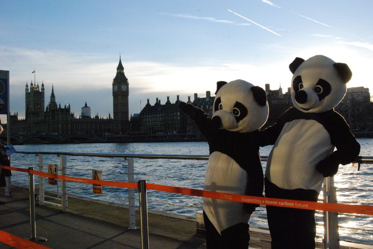 Our final image: Pandas at the pier