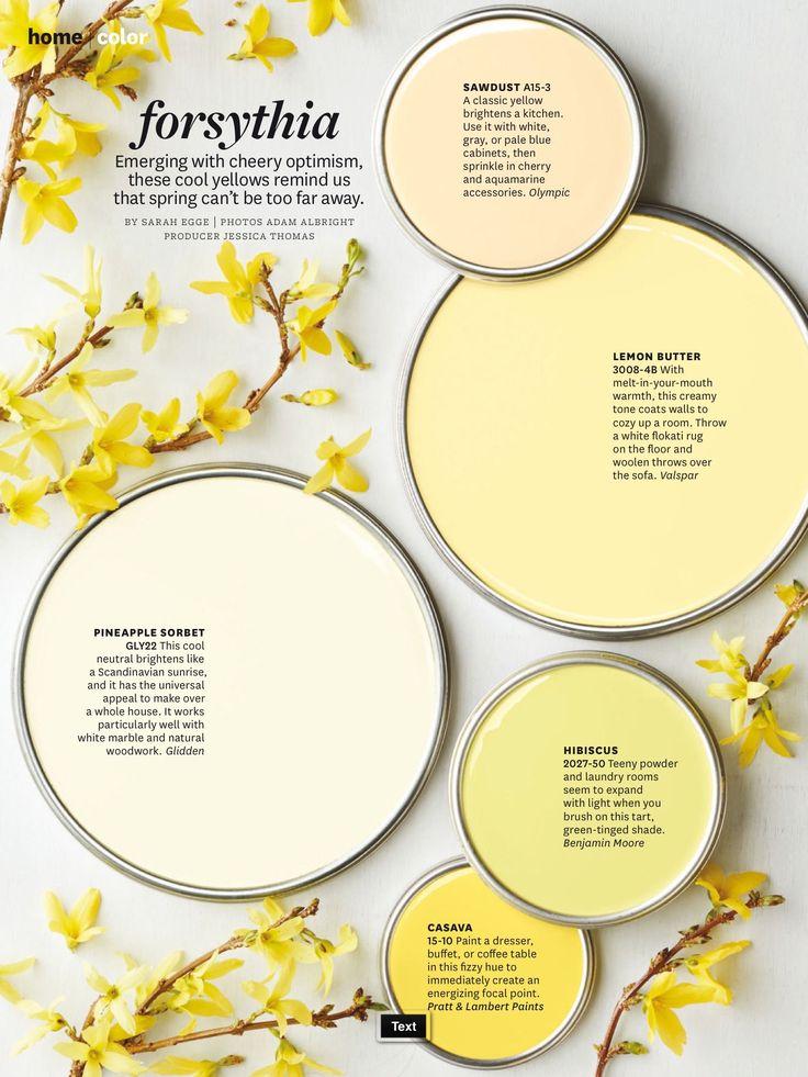 Better Homes & Gardens home|color - forsythia #SpringIntoStyle…