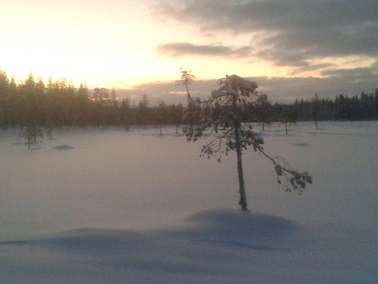 Pakkanen puree poskia, lumi narskuu kenkien alla - aurinko nousee, vai nouseeko