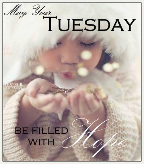 ❧ Les jours de la semaine ❧. Happy Tuesday.