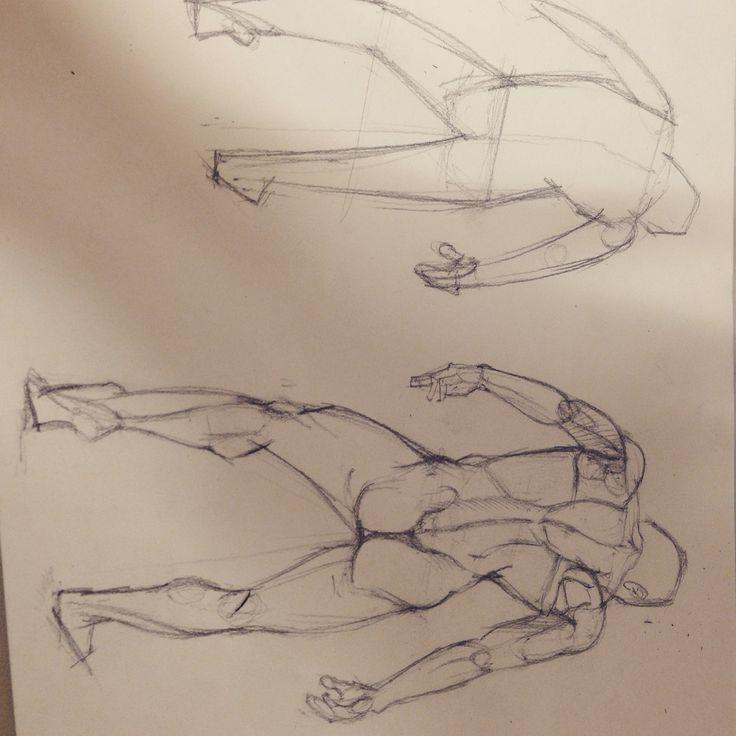 남성 등근육 공부
