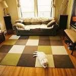 local carpet cleaners Lapeer Michigan