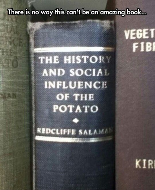 Actually the potato is really important and did have a huge impact on history. It's really interesting.