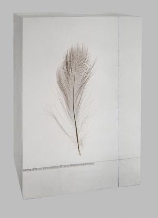 Shiro Kuramata  Floating Feather 1990