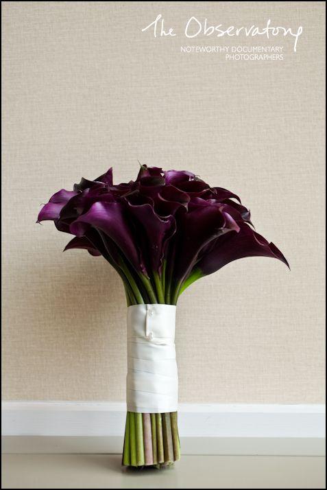 dark purple callas!!!