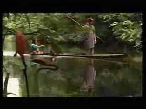 Peter Sue & Marc - AMAZONAS
