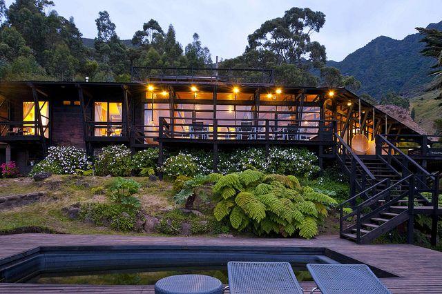 Chili-Robinson Crusoe Lodge. Vogelspotten op een heerlijk eiland als afsluiter van uw reis door Chili.