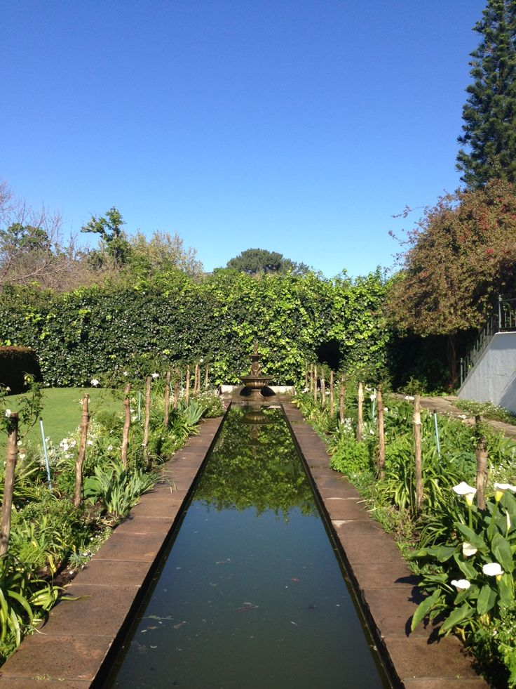 The sun is out and our gardens are looking superb. If you're in Cape Town, why not visit?