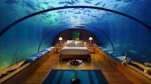 undersea views