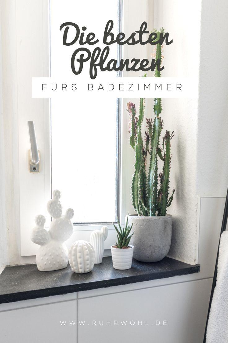 Wann Muss Ich Meine Pflanze Giessen In 2020 Pflanzen Pflanzen Kaufen Pflanzen Fur Innen
