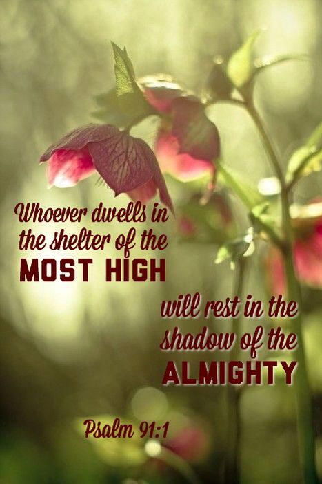 Amen! Psalm 91: 1