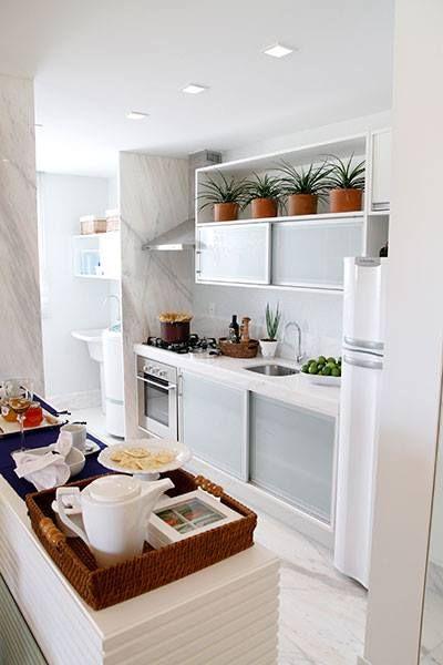 .plantas na cozinha