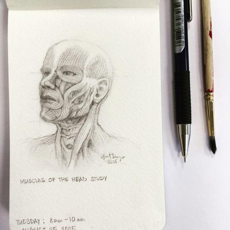 Anatomy study. Graphite sketch drawing on moleskine sketchbook by Vincent Joe Dango.